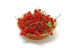 Red currants in the plate isolated on white. Ripe red currants in the plate isolated on white background Stock Photos