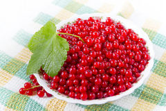 Red currants in a plate. Ripe red currant in ceramic bowl Stock Images