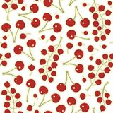 Red currants red cherries on white  seamless patte Royalty Free Stock Photo