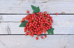 Red currants on rustic wooden background with space for text Royalty Free Stock Photography