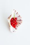 Red currants in shell Stock Photos