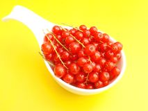 Red Currants. Some fresh red currants in a bowl Royalty Free Stock Photos