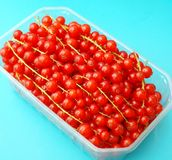 Red Currants. Some fresh red currants in a bowl Stock Photo