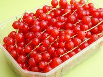 Red Currants. Some fresh currants in a bowl Stock Photos