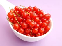 Red Currants. Some fresh currants in a bowl Stock Photo