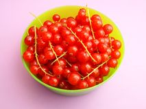 Red Currants. Some fresh currants in a bowl Stock Image