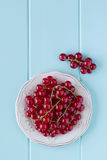 Red currants. Some red currants on a plate over a robin egg blue wooden table. Vintage Style Stock Photo