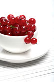 Red currants in white cup Stock Photo