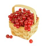 Red Currants in a Wooden Basket Royalty Free Stock Photos