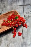 Red currants in wooden bowl on wood Stock Images