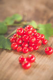 Red currants on a wooden surface Stock Images