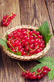 Red currants on wooden table Royalty Free Stock Photos