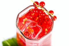 Red current drink Royalty Free Stock Photo