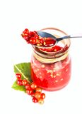 Red current jam Royalty Free Stock Photos