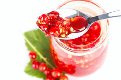 Red current jam Royalty Free Stock Photo
