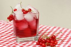 Red current juice Stock Image