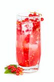 Red current refreshing drink Stock Photos
