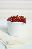 Red currents. Fresh red currents in the white bowl stock photo