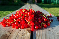 Red currents on wooden bench Stock Photos