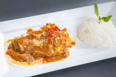 Red Curry chicken rice Royalty Free Stock Image