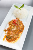 Red Curry chicken rice Royalty Free Stock Images