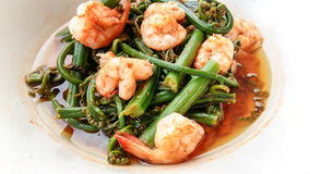 Red curry shrimps Stock Photos