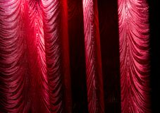 Red curtain as an abstract background. Texture Stock Photography