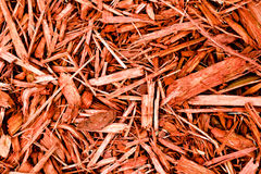 Red Cypress Mulch Stock Photo
