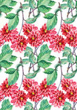 Red dahlia, watercolor, pattern seamless Stock Images