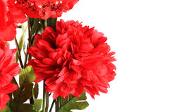 Red dalia flower Royalty Free Stock Photography