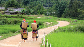 Red Dao Hilltribe women in Sapa Stock Photos