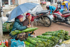 Red Dao woman in Sapa, Vietnam Stock Photos