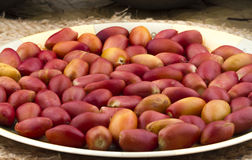 Red dates. Healthy sweet fruits red dates Royalty Free Stock Image