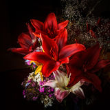 Red Daylily Arrangement with Other Flowers Royalty Free Stock Images