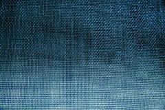 Red de mosquito azul Primer foto de archivo libre de regalías