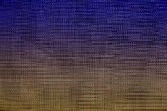 red de mosquito Púrpura-marrón imagenes de archivo