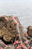 Red de pesca en una roca Foto de archivo