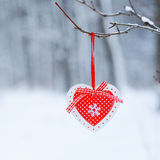 Red decor heart hanging on thee branch Royalty Free Stock Photo