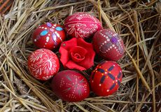 Red decorated Easter eggs with rose