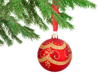 Red decorations Christmas ball hanging on a fir tree branch Stock Photos