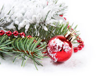 Red decorations  and fir branch Stock Images