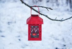 Red lantern hanging on the tree branch. Snowy winter morning in park. Red decorative lantern with candle hanging on the tree branch. Snowy winter evening in royalty free stock images