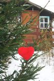 Decorative plush hearts on tree branch. stock photos
