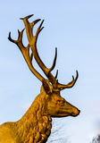 Red deer statue in bronze royalty free stock photography