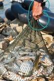 Red del asimiento del pescador Foto de archivo libre de regalías