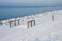 Red del ganado a lo largo de la costa nevosa los Países Bajos Fotos de archivo