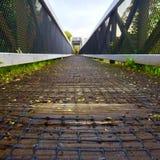 Red del puente Imagenes de archivo
