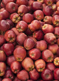 Red delicious apple. Groud in china Royalty Free Stock Photography