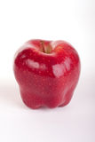 Red Delicious Apple on white. A red Delicious Apple on white Royalty Free Stock Image