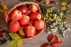 Red delicious apples ripe Stock Photo
